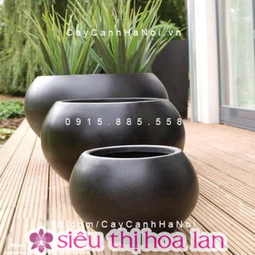 Mua chậu xi măng nhẹ trồng cây chất lượng tại Hà Nội